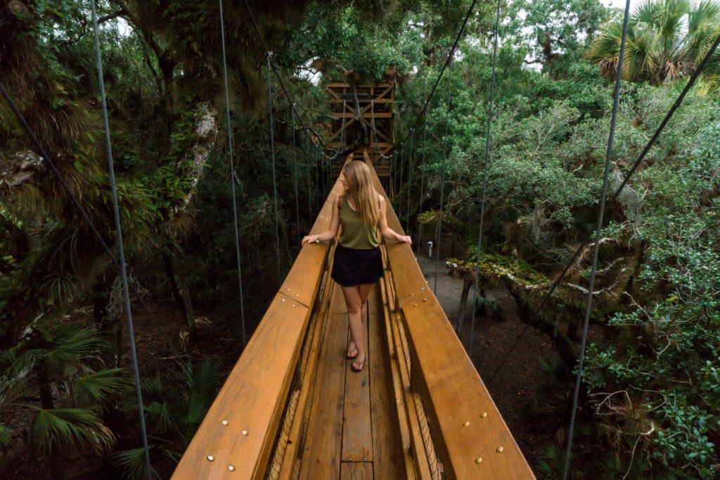 Myakka State Park   Sarasota   Florida   Pages of Travel