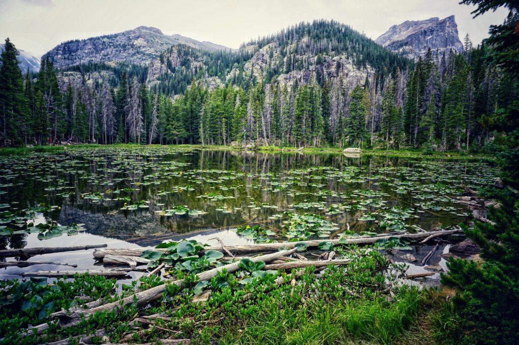 Nymph Lake - Bear Lake trailhead
