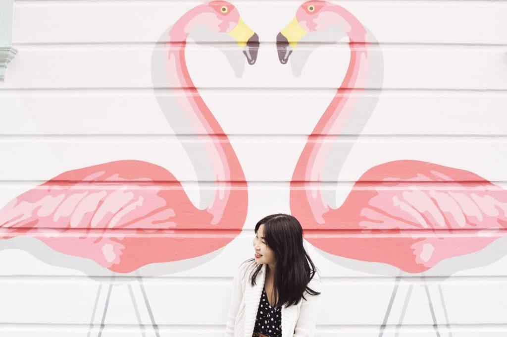 Media Noche Flamingos mural in San Francisco