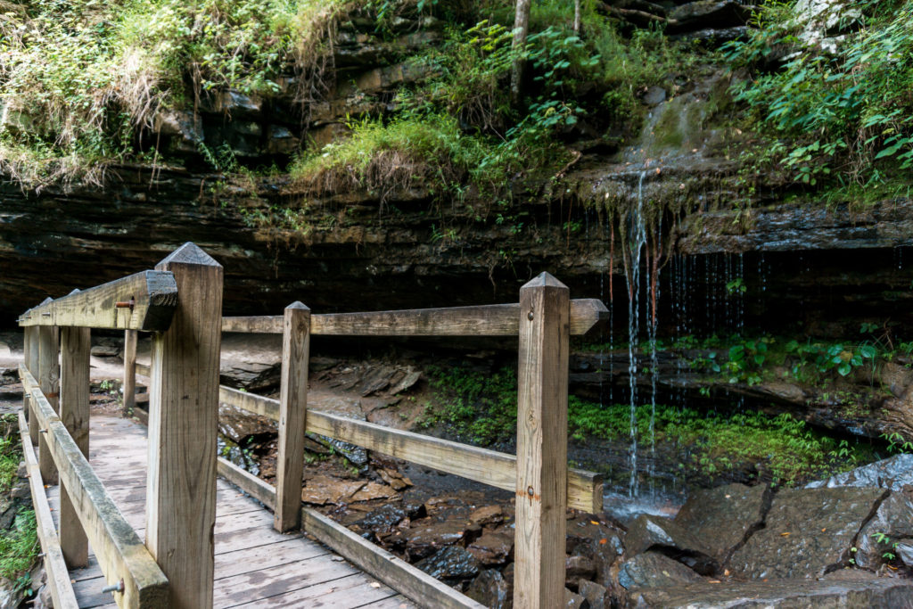 Devil's Den State Park in Arkansas