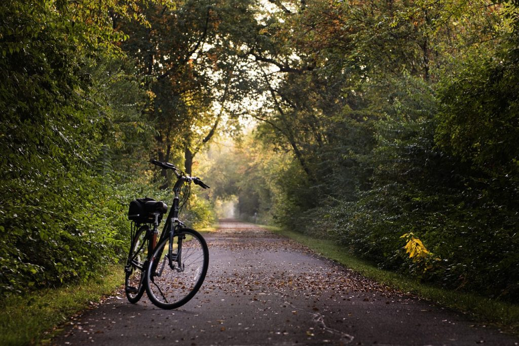 Bike Trails in Northwest Arkansas