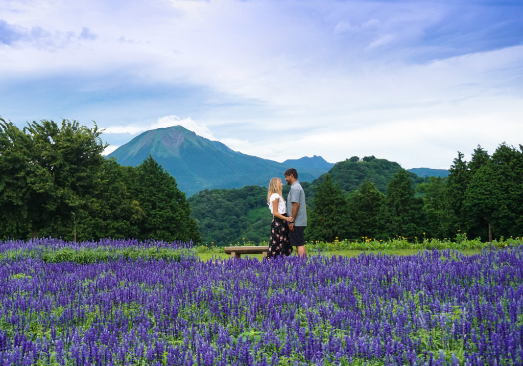 Tottori Flower Park near Mt. Daisen