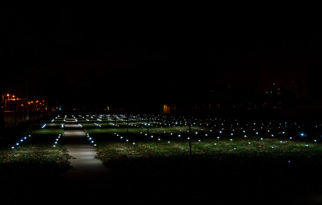 Whiteout - an art installment at Campbell Park with LED light bulbs suspended by wire and illuminating the ground.