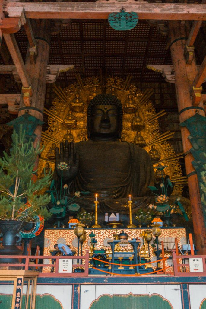 A large wooden Buddha inside a temple in Nara