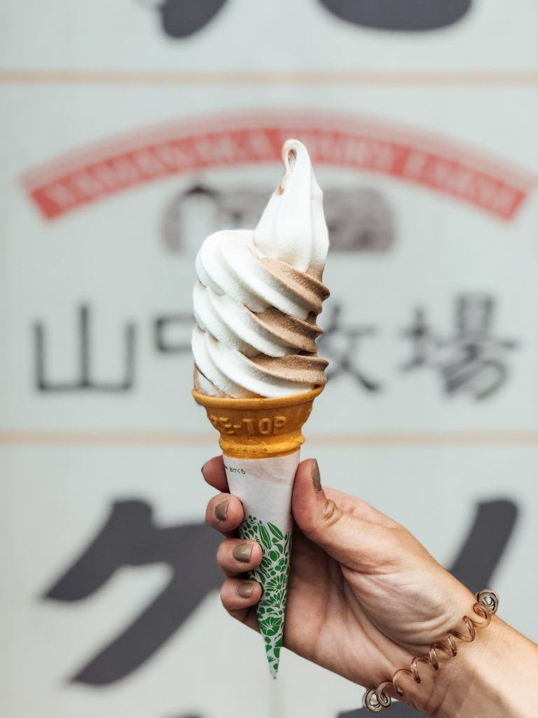 Hokkaido Milk Ice Cream (chocolate and vanilla swirl)