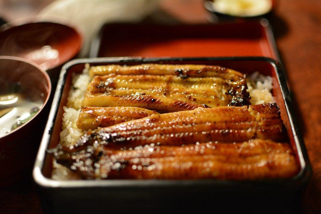 Unagi rice set in Yanagawa