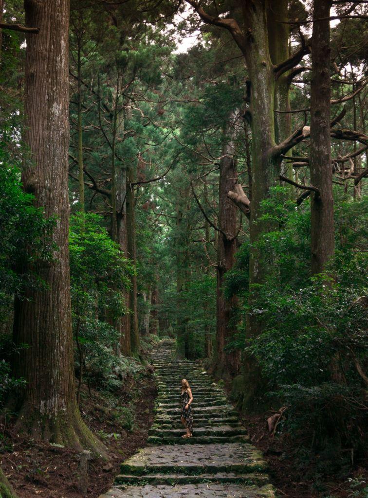 Daimonzaka - Kumano Kodo trails