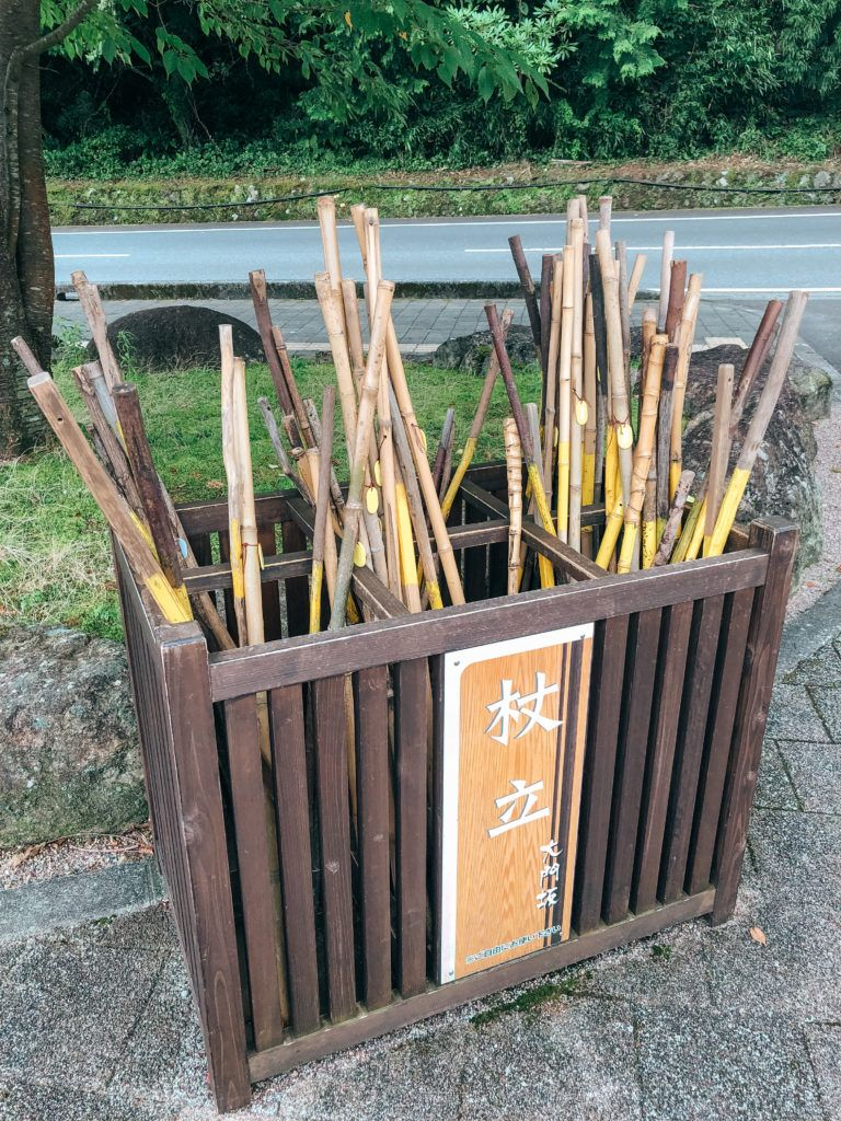 Bamboo walking sticks that are free to use while on Kumano Kodo.
