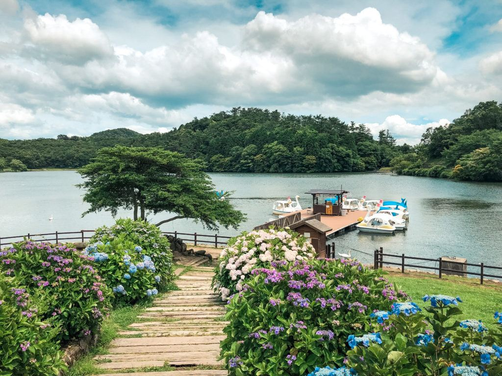 Paddle boats at Shidokako Lake - things to do in Beppu, Japan